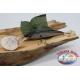 Señuelos artificiales Clásico 10cm-17gr. flotante, con el cefaletto. FC.V138
