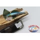 Artificial Minnow Sweet Viper 12,5 cm-18gr Sinking col.anchovy FC.V300
