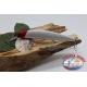 Artificiale Minnow Jerk 3 ancorette 13cm-18,5gr Floating col.iridescente FC.V383