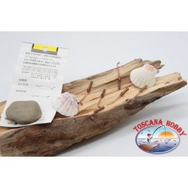 Pack de 10 anguilline ragloo Mepps 4.5 cm col. brown FC.P131