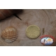 1 Packet of 12 pcs. of swivels Mustad series 77502 gold sz. 16 FC.G56