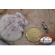 1 Sachet, 12 pcs. of swivels Star fish series 1005 gold sz.3 FC.G79